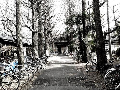 Feb_28_2012_479